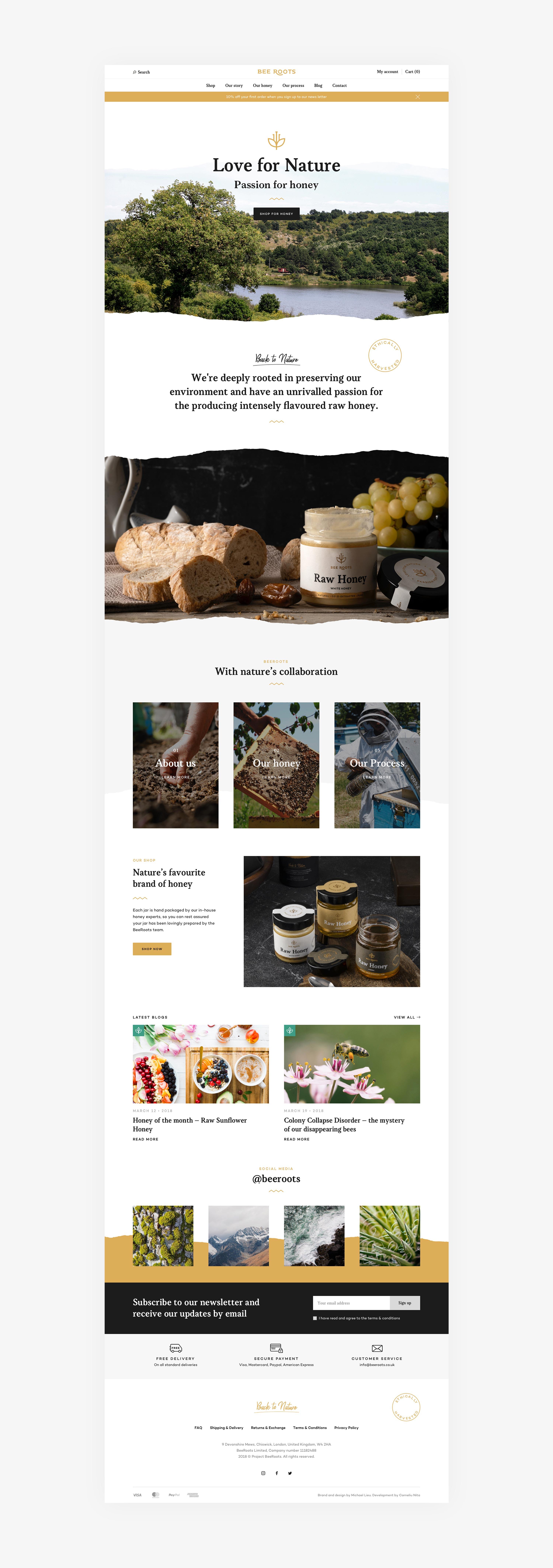 BeeRoots website design