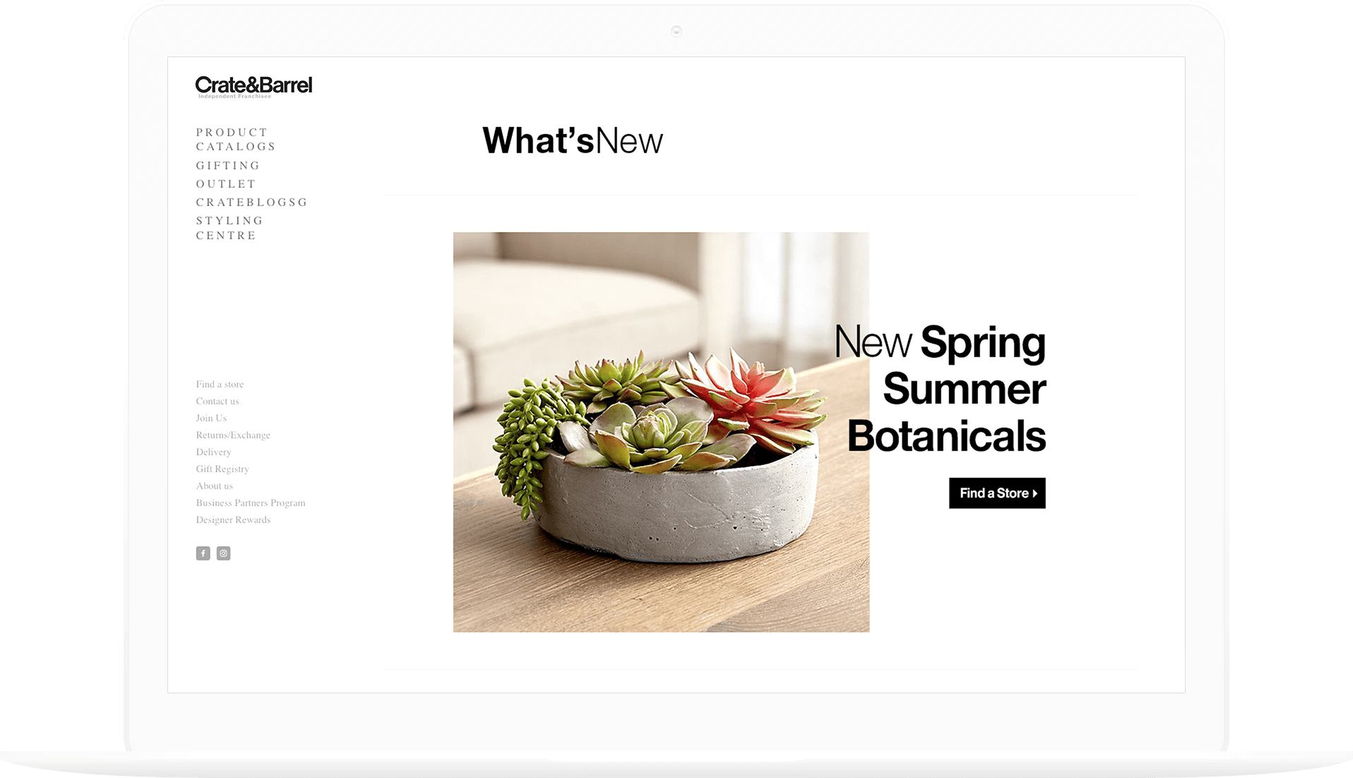 The previous, more simple homepage, plant in bowl