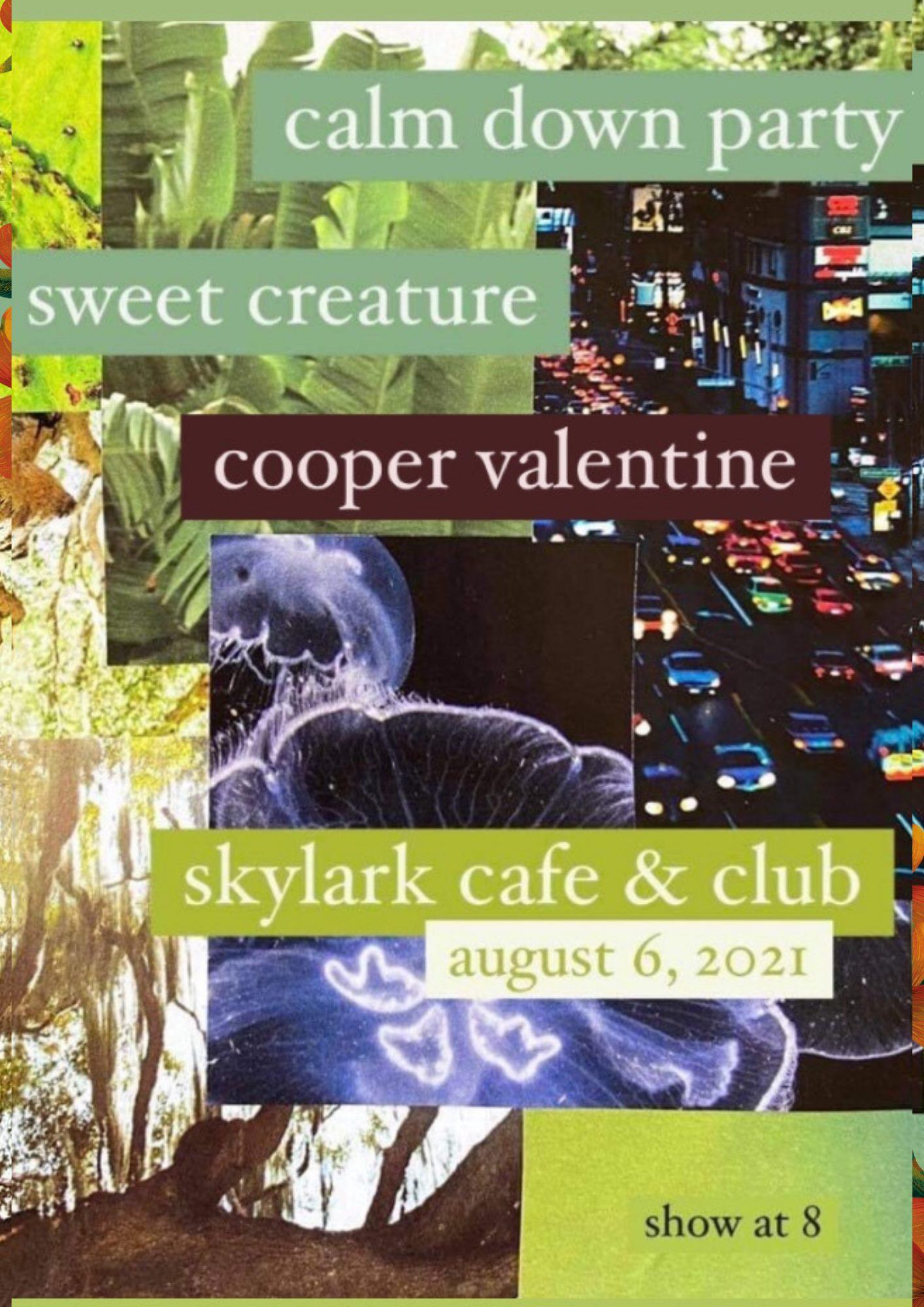 https://www.facebook.com/sweetcreaturemusic https://coopervalentine.bandcamp.com/album/songs-for-driving https://calmdownparty.bandcamp.com/album/bossa-gemini