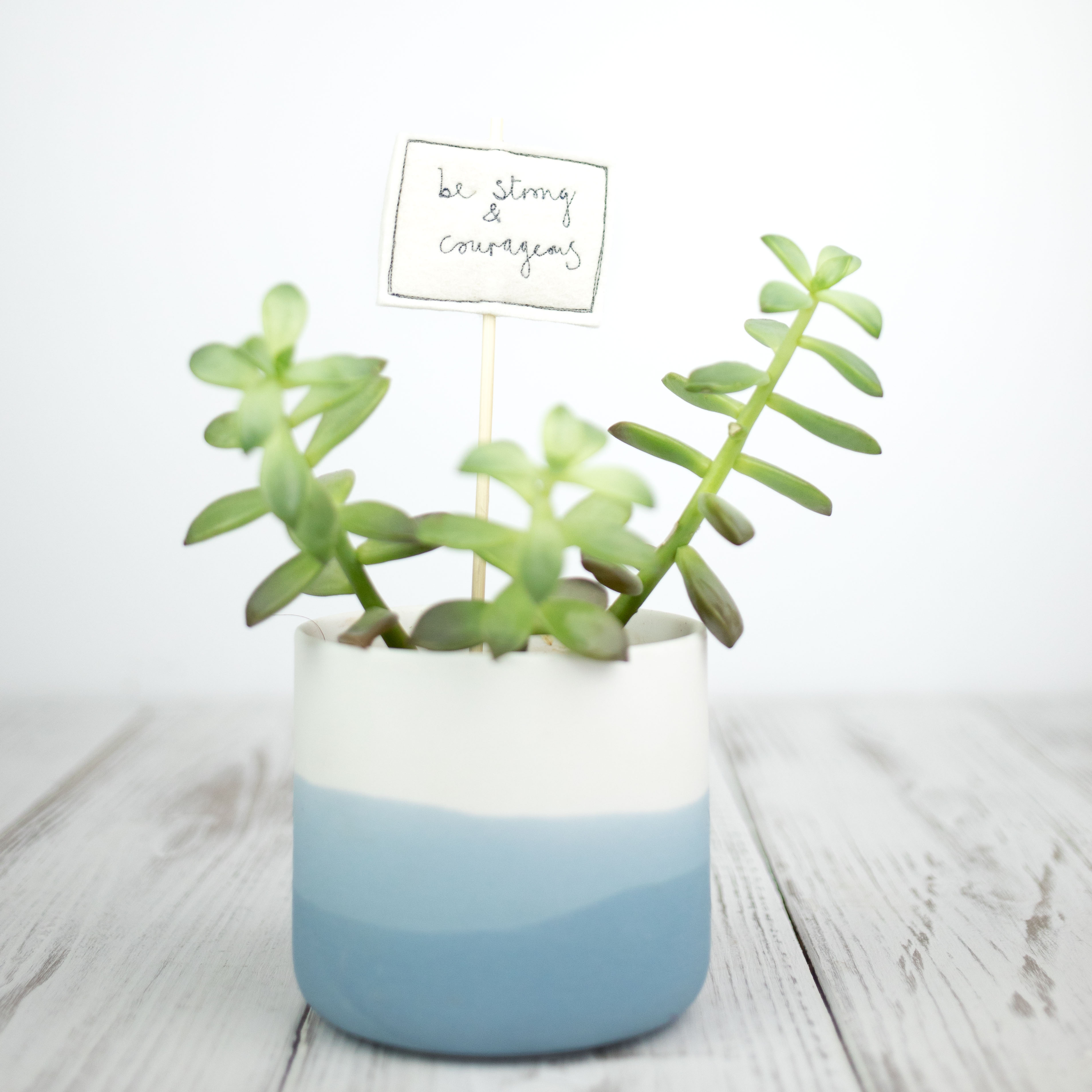 Plant pot pals