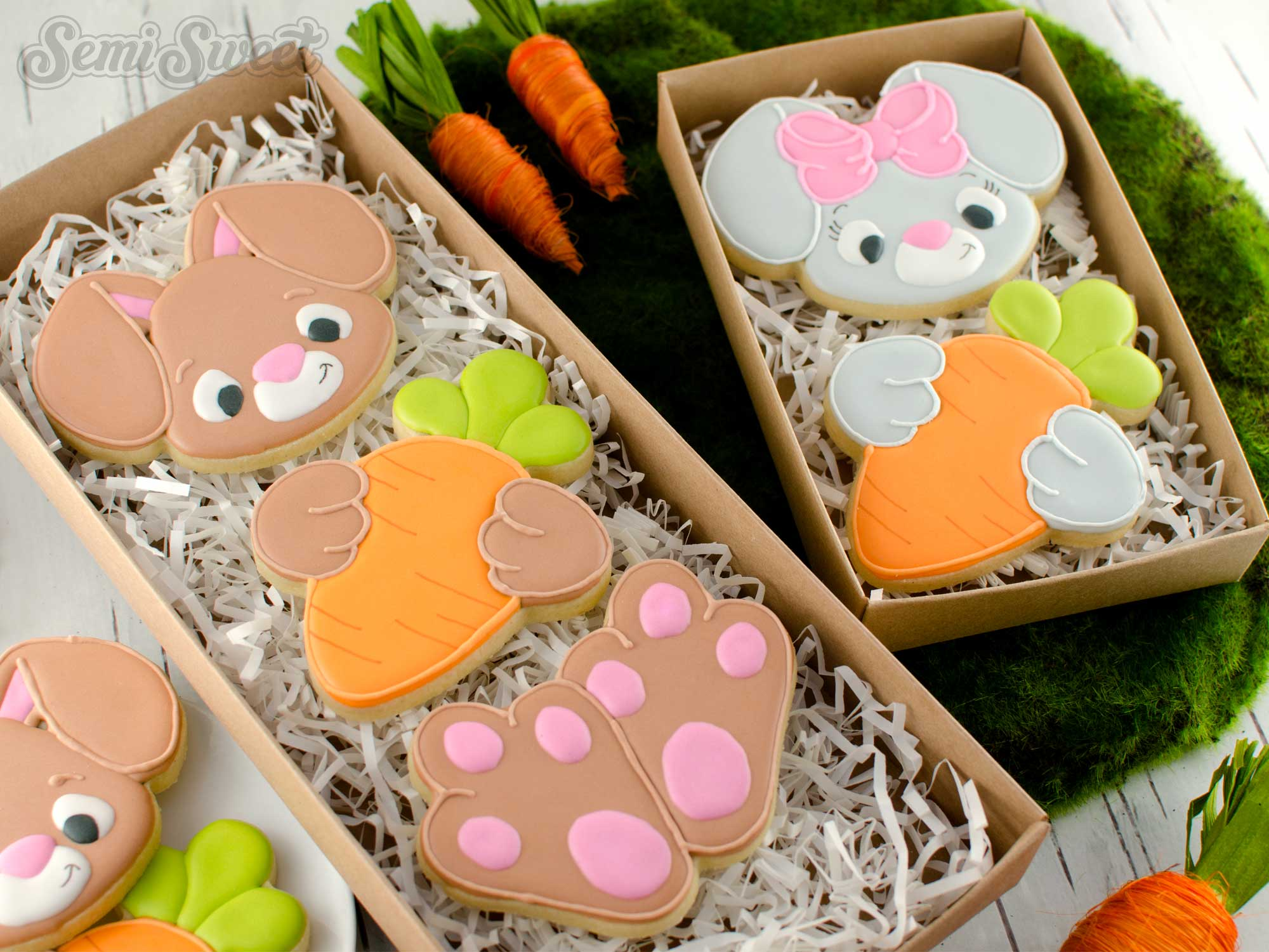 How to Make a Bunny Body Cookie Set