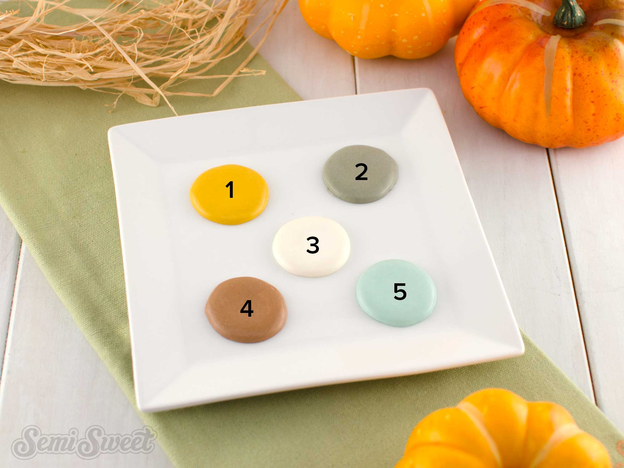 cool and cozy fall color palette