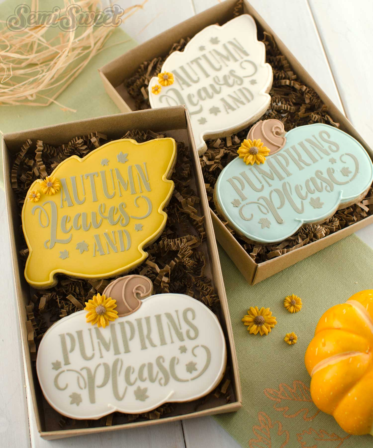 autumn leaves & pumpkins please cookie set