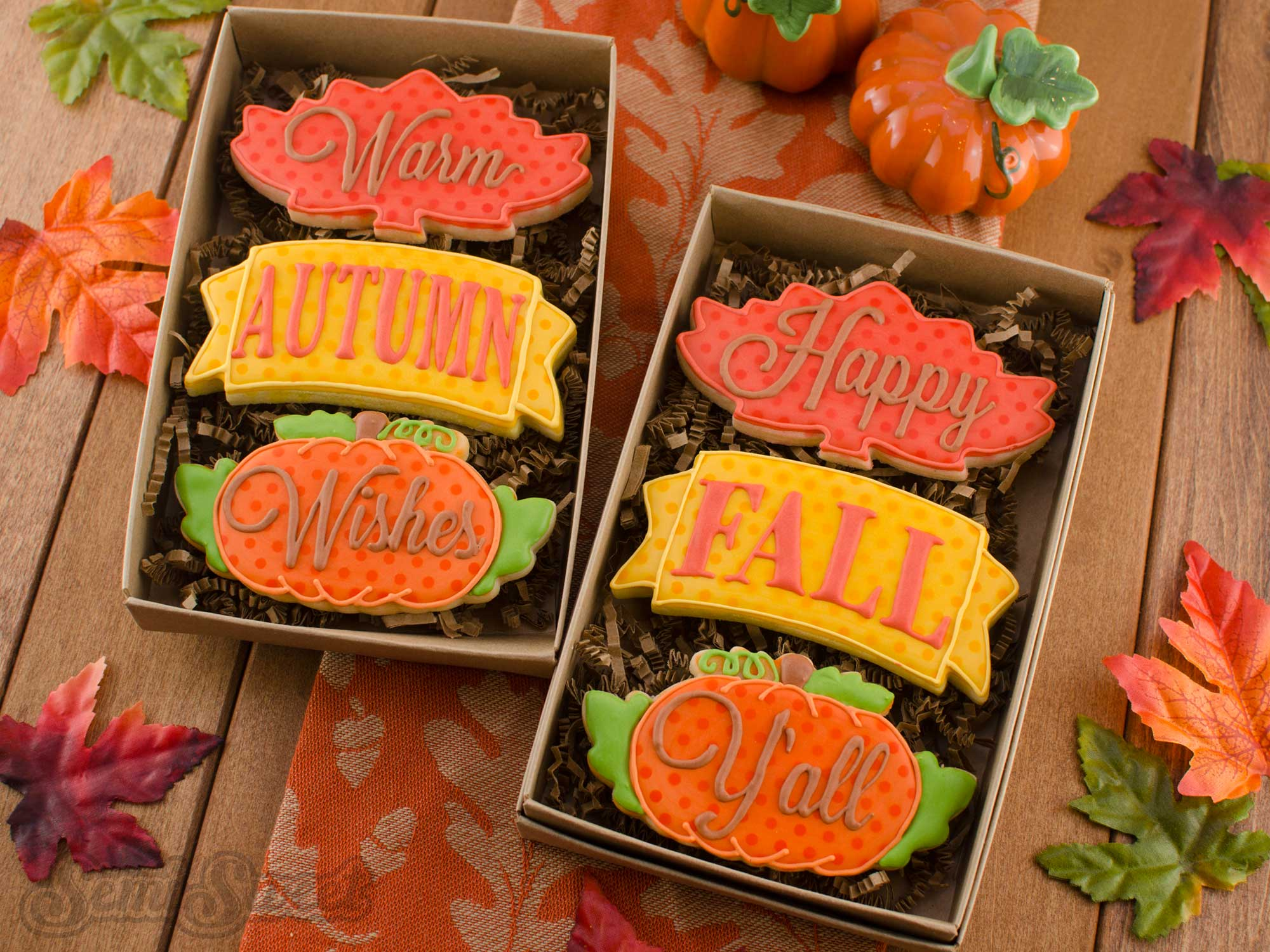 Fall Cookie Set by Semi Sweet Designs