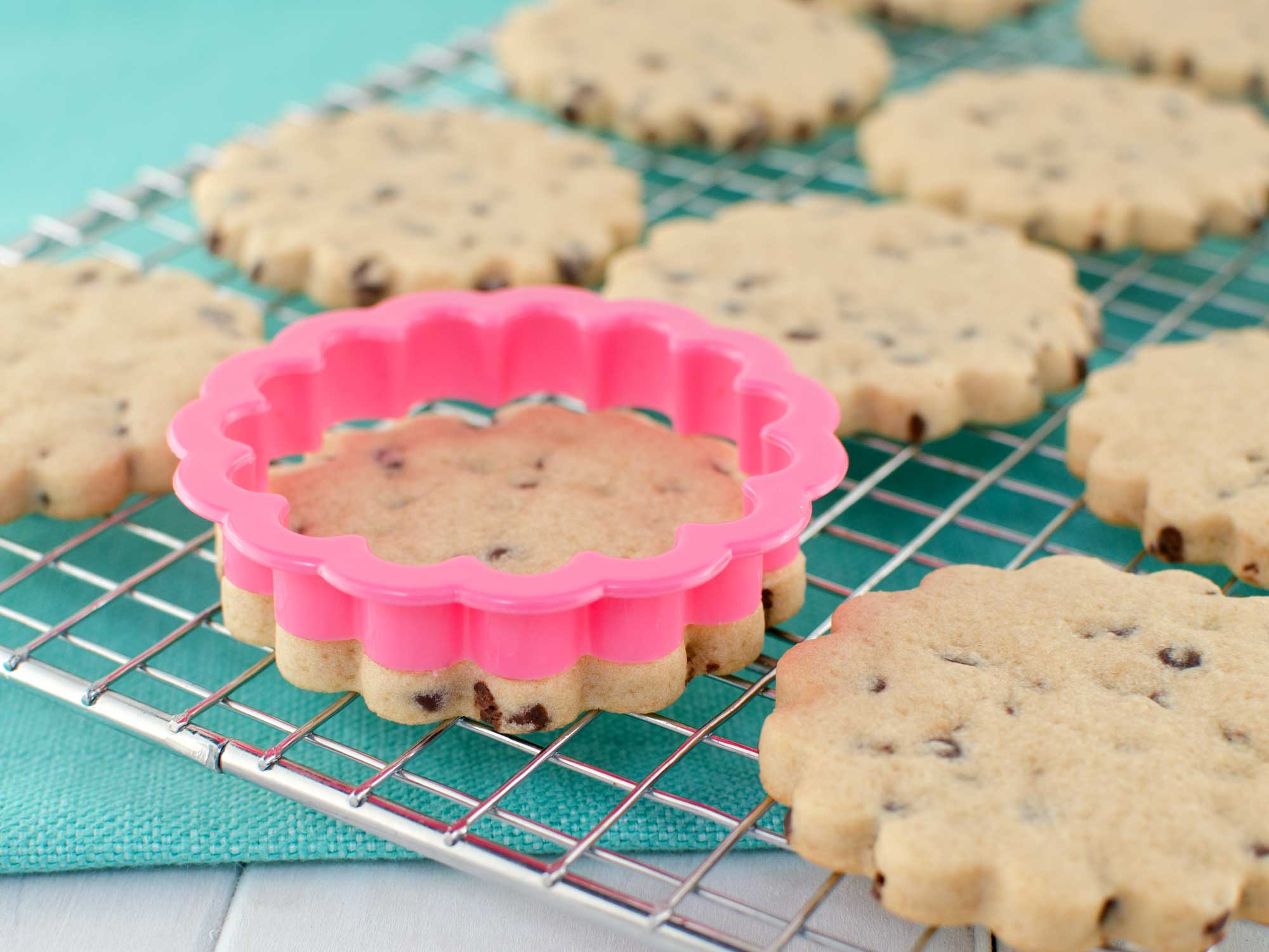 Chocolate Chip Cookie Roll Out Recipe