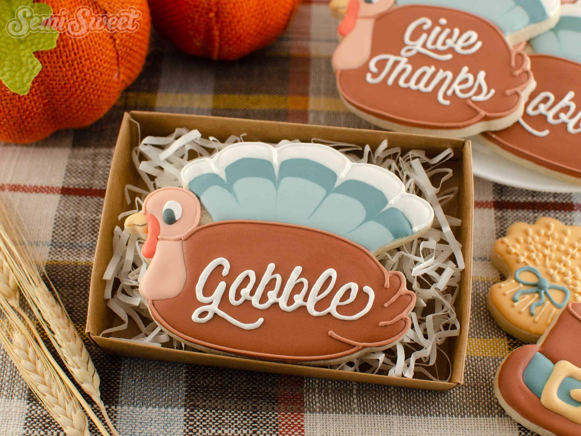 How to Make Turkey Plaque Cookies