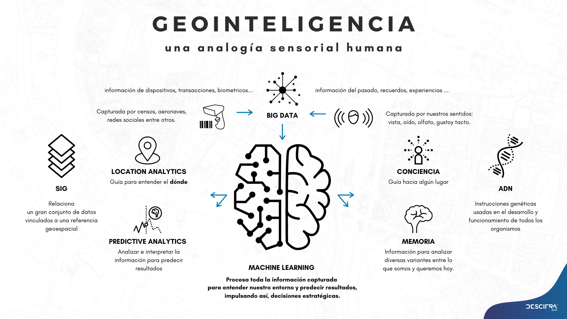 Analogía sensorial humana