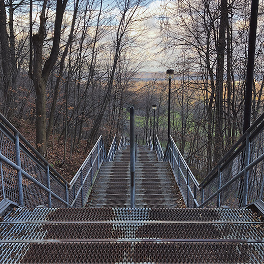 Escarpment stairs during spring