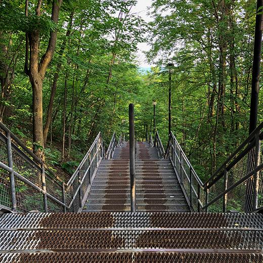 Escarpment stairs during summer