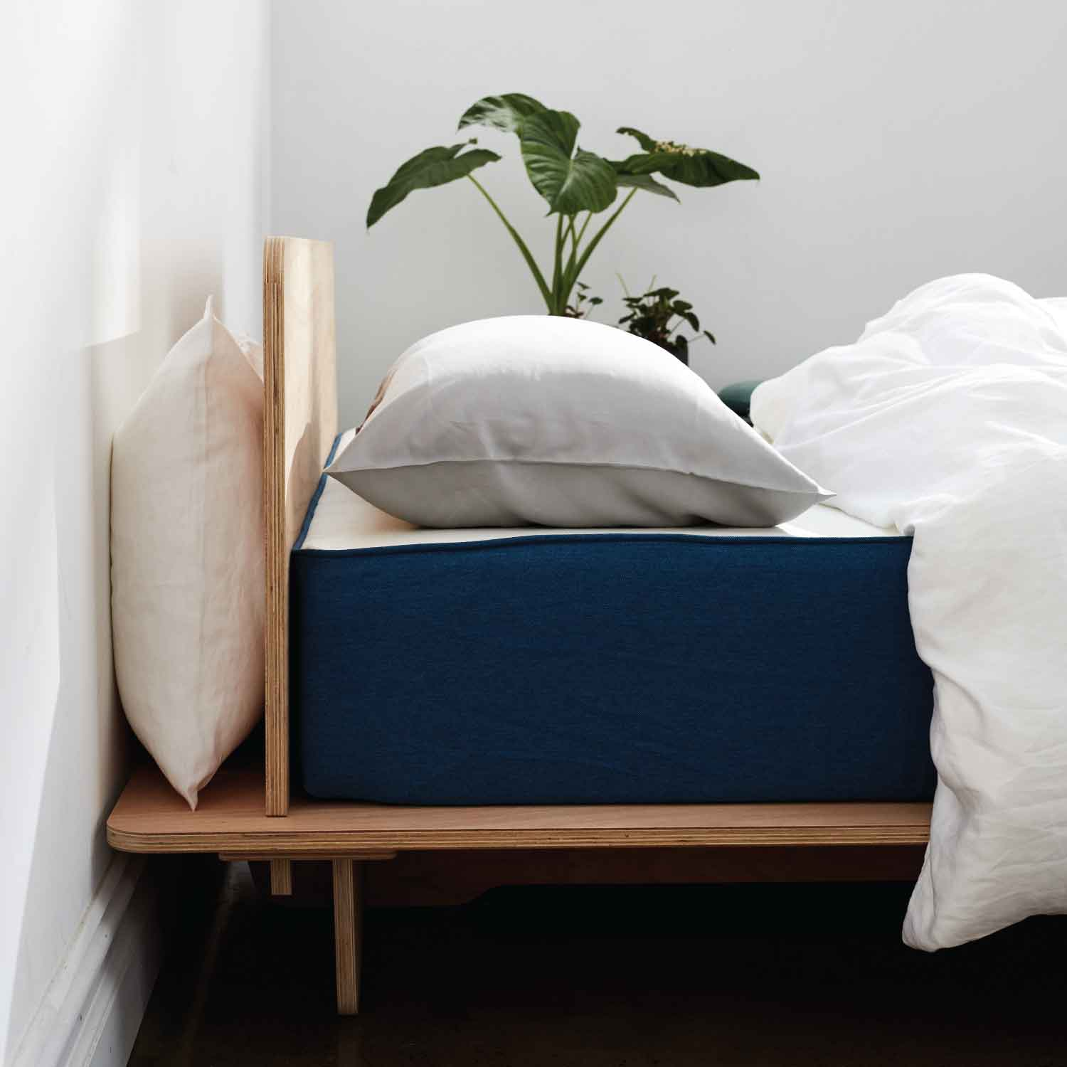 The Koala mattress on plywood bed frame
