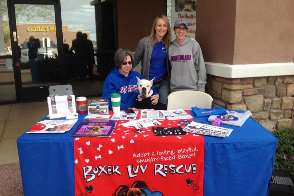 Boxer Luv Rescue adoption team volunteers