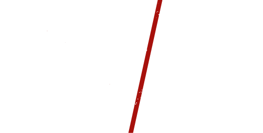 Logo El Toro Negro