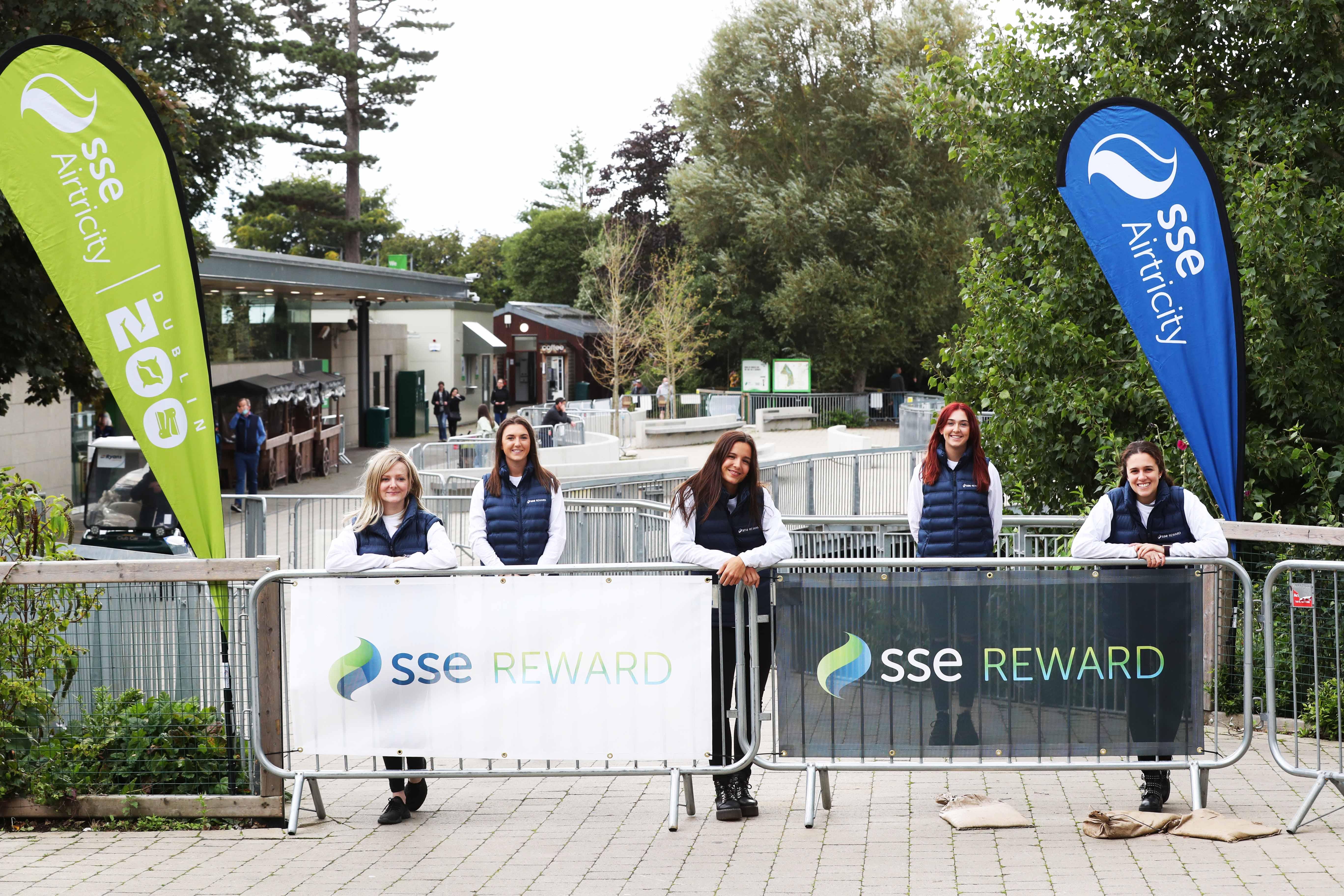 Ripple Marketing Agency Covid 19 Event Activation Dublin Zoo