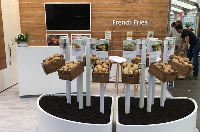 Europlant auf der Potato Europe 2019 in Belgien