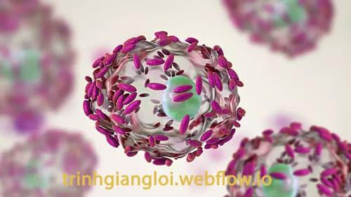 Nguyên nhân viêm âm đạo là gì?