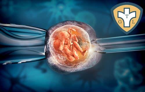 Cách tính tuổi thai khi thụ tinh nhân tạo trong ống nghiệm IVF