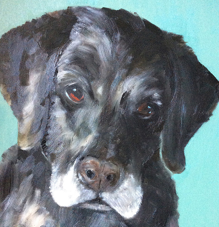 Oil painting of labrador with blue background by Maria Laffey