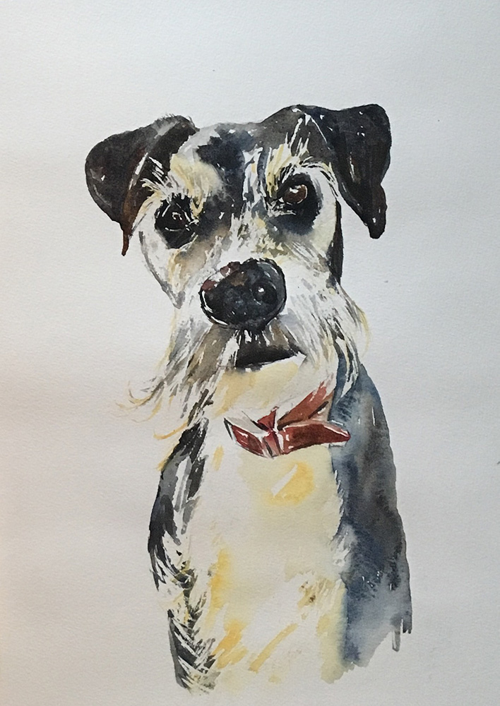 watercolour painting of dog by Maria Laffey