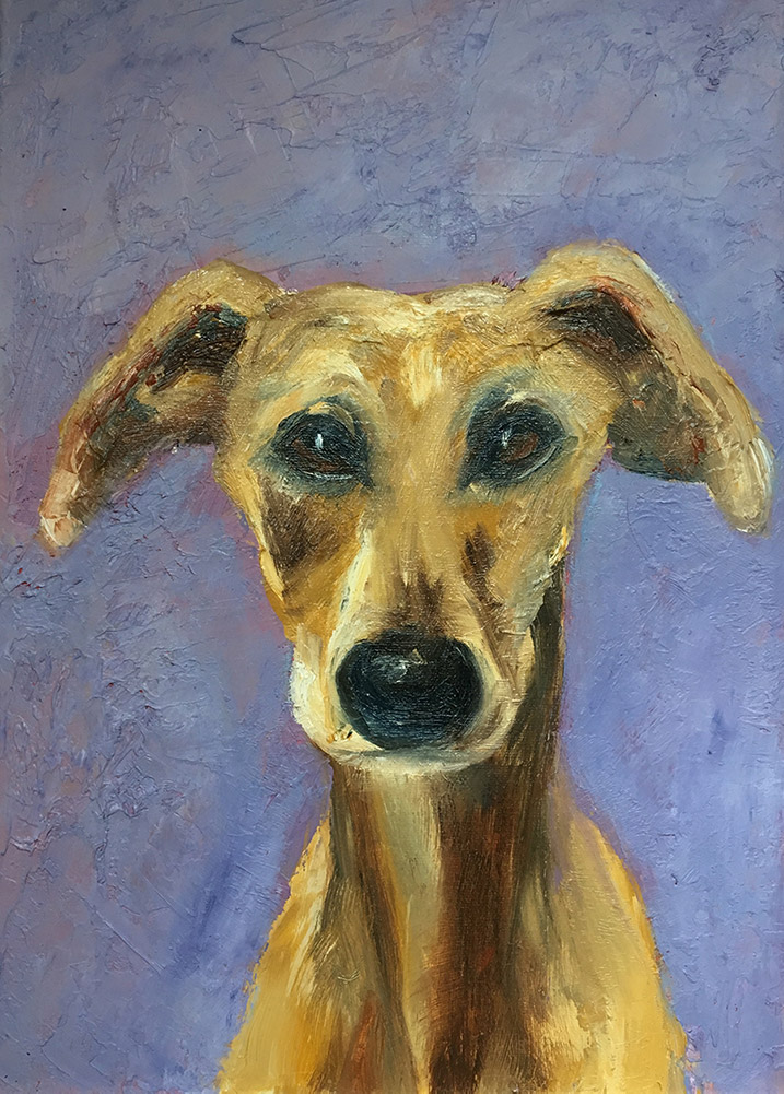 colourful oil painting of whippet dog by Maria Laffey