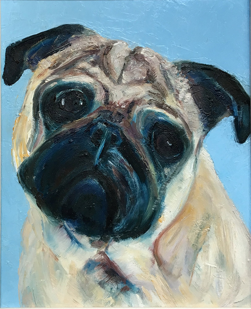 Oil painting of pug by Maria Laffey