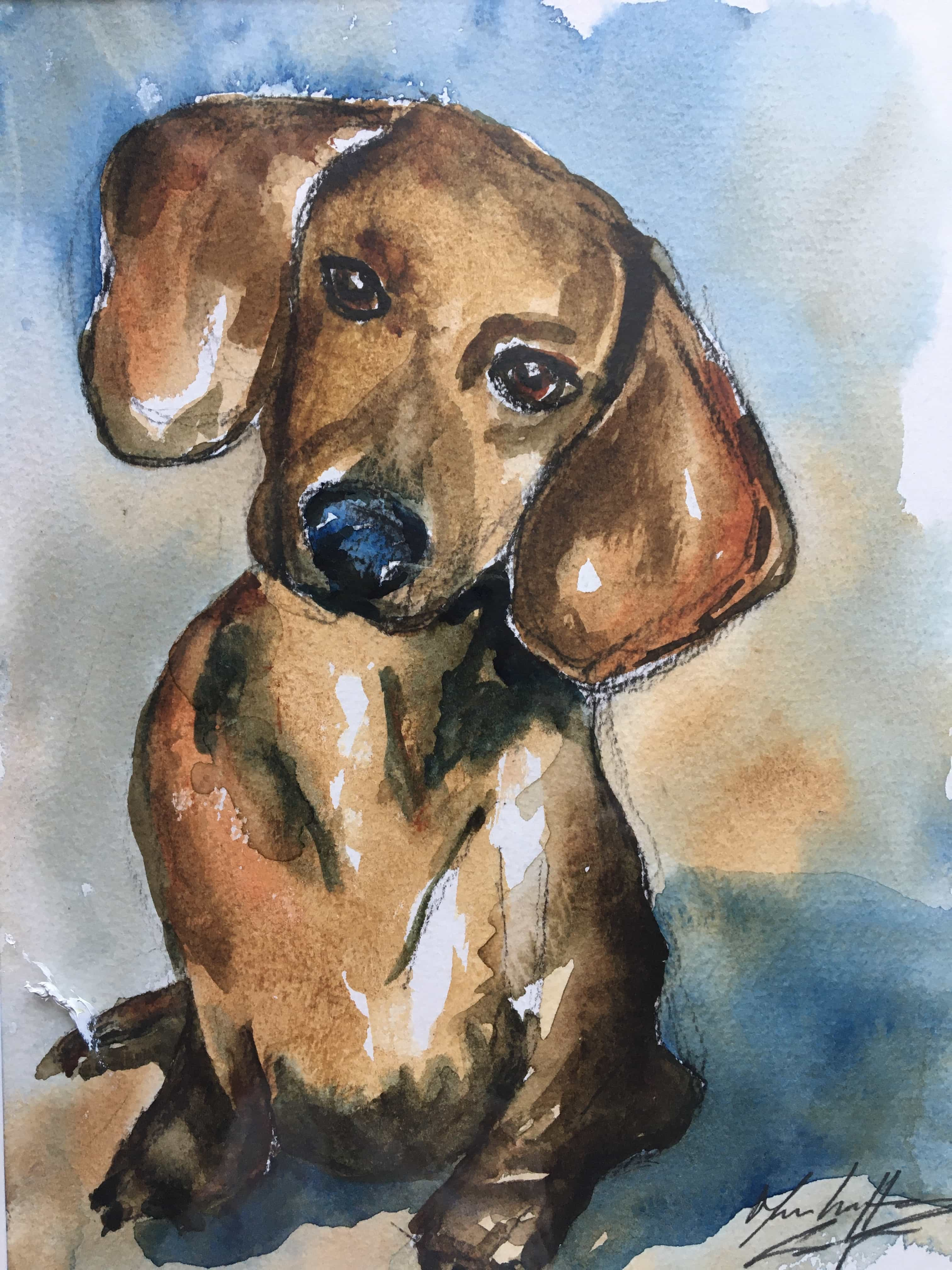 watercolour small brown sausage dog painting. daschund painting