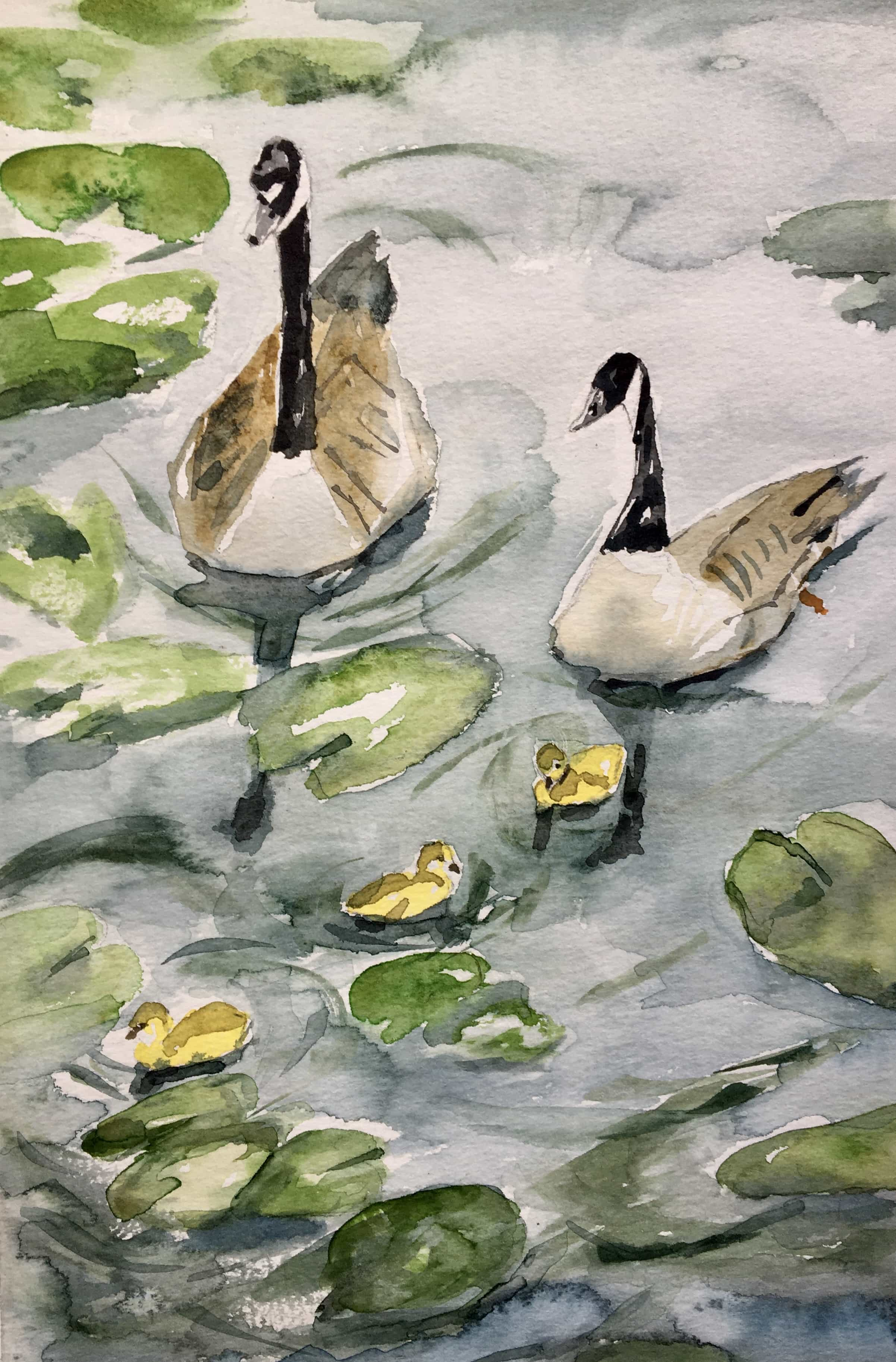Watercolour Geese and Goslings lilly pond