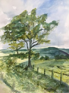 watercolour of Northumberland in summer. Green tree and fields