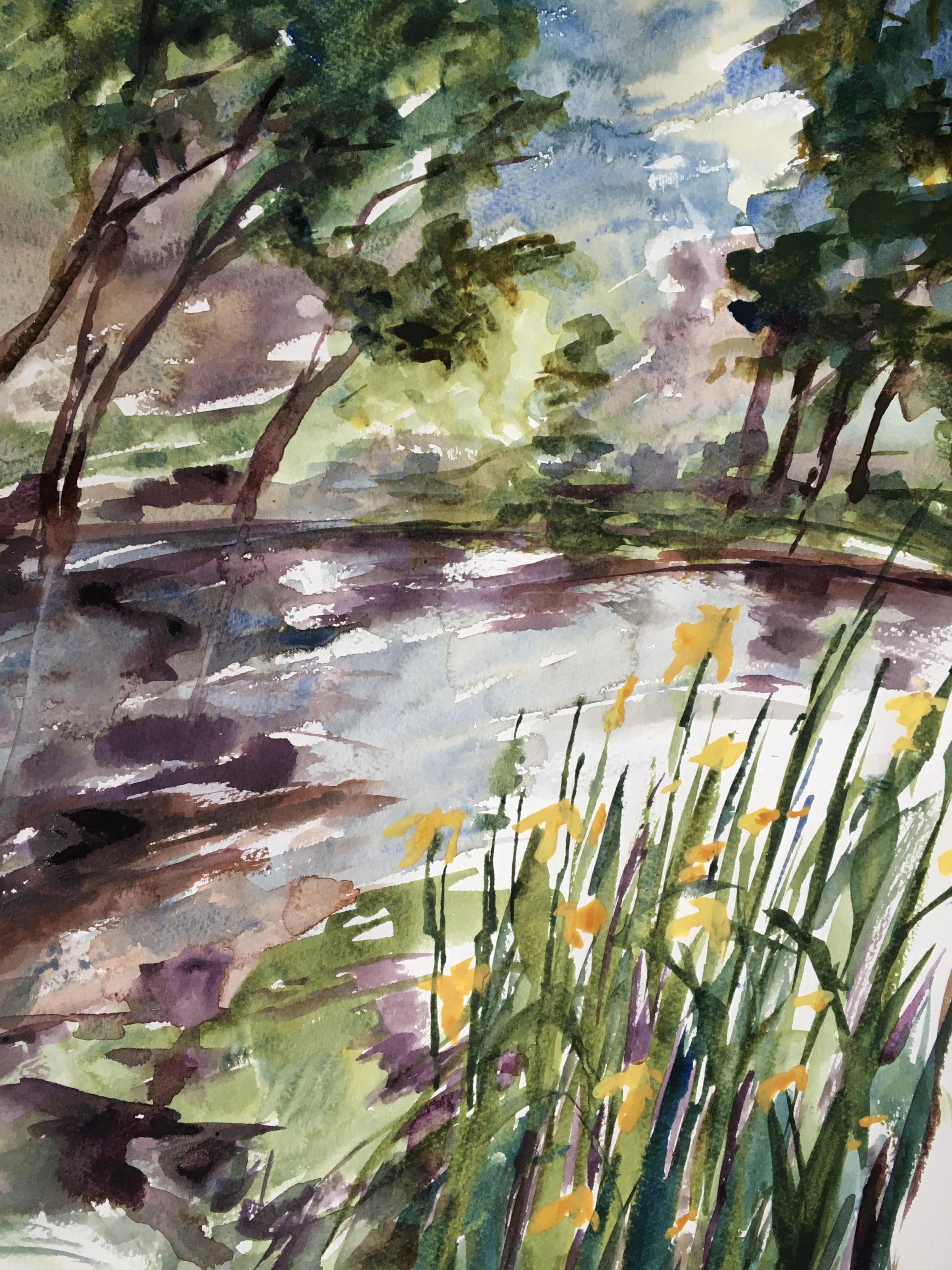 watercolour flag iris reflections and trees