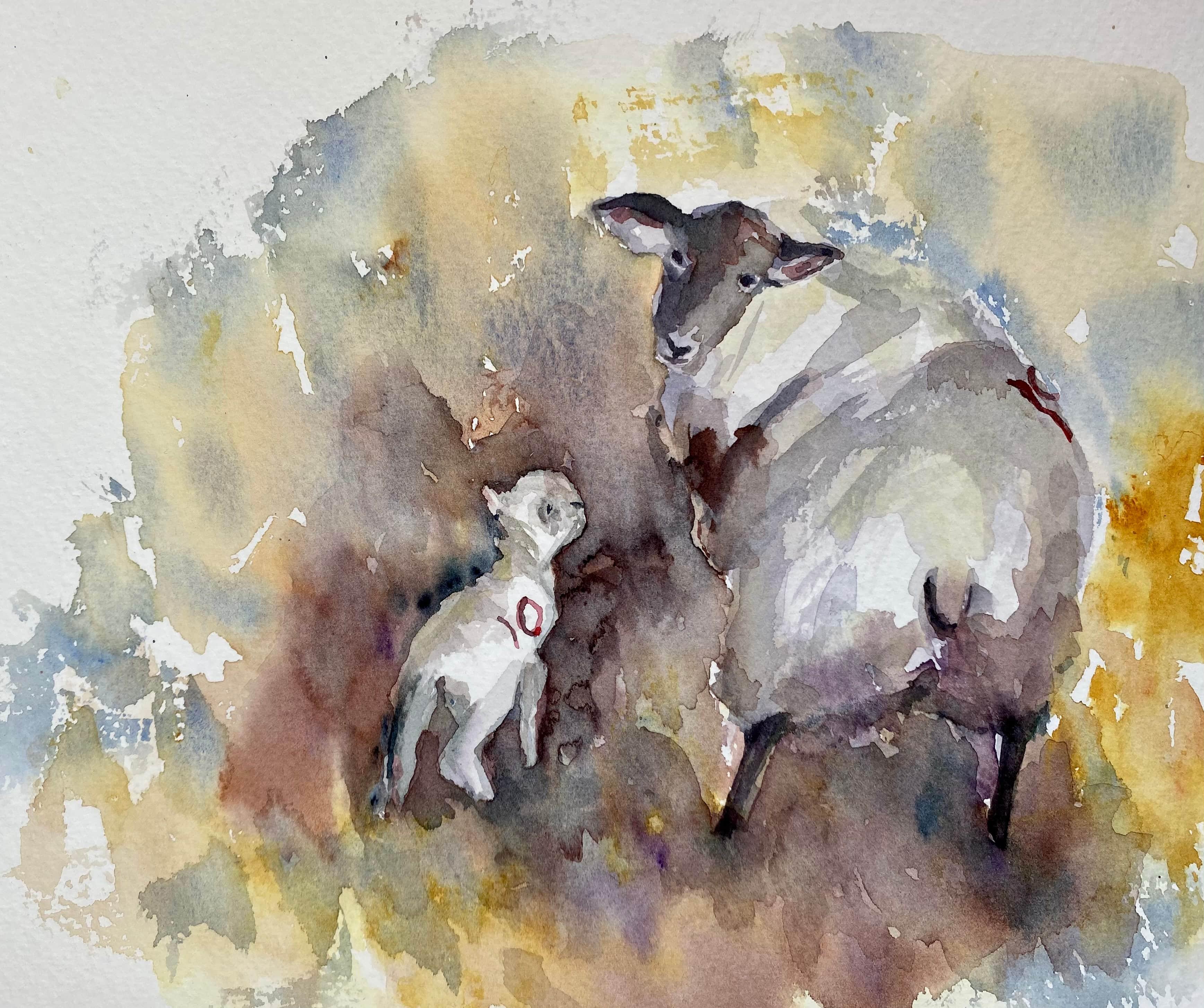 watercolour sheep lamb brown and yellow