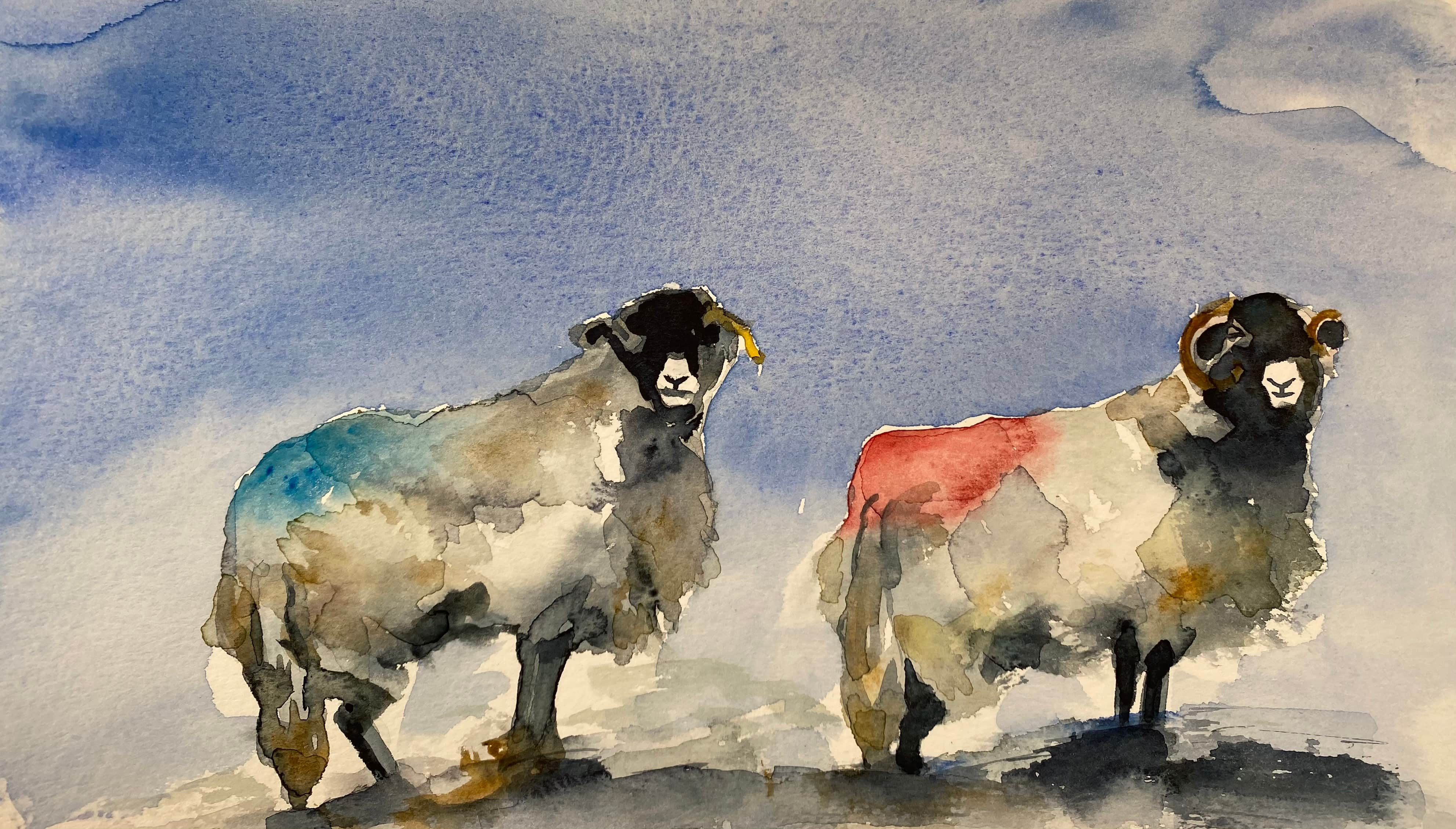 watercolour sheep blue sky red and blue