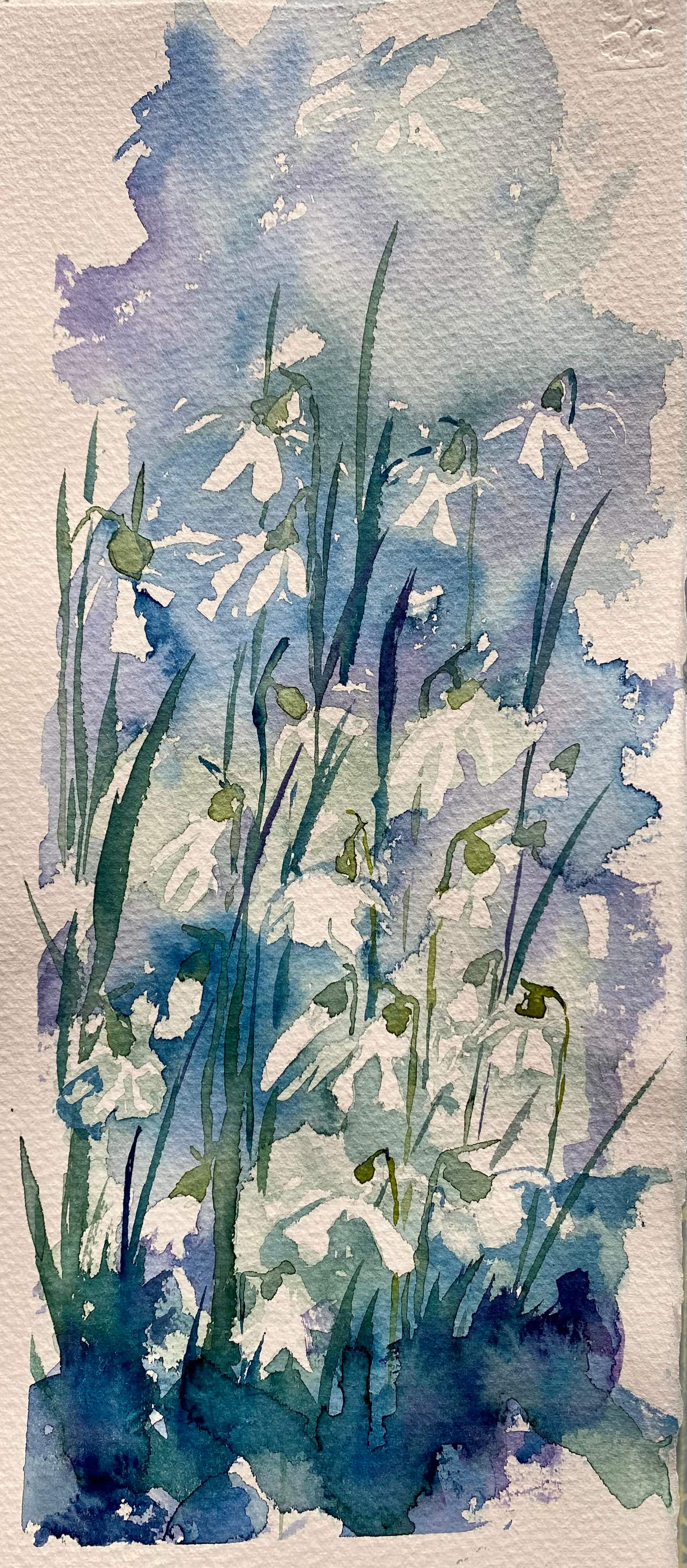watercolour snowdrops white blue green