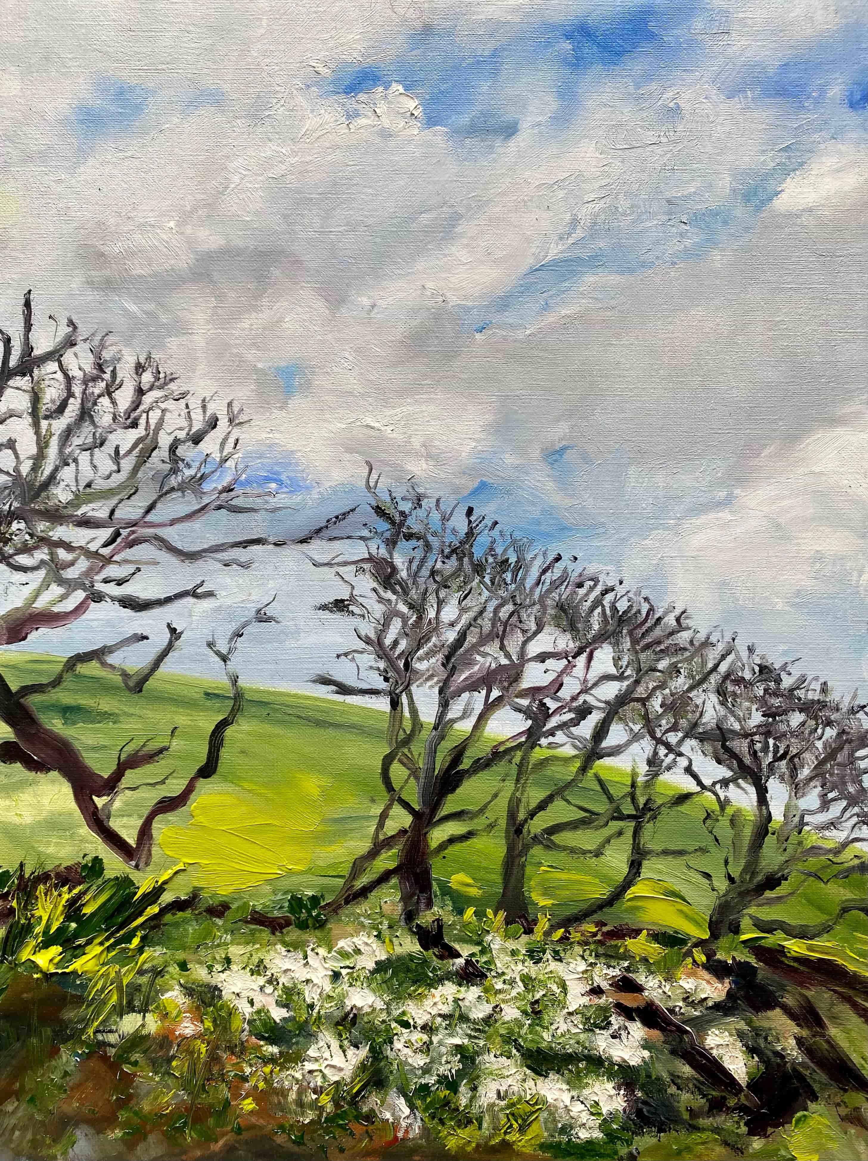 blue sky green field winter hedge whtie snowdrops