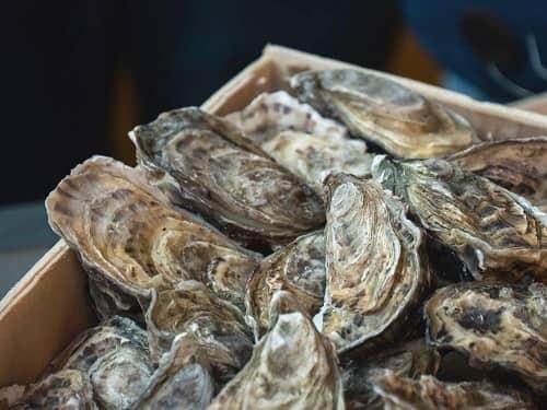 HÀU ăn thế nào 10 món hàu biển thơm ngon tốt cho sức khỏe 2