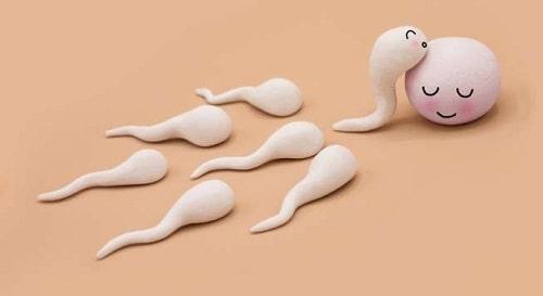 Xuất tinh ra ngoài khả năng có thai là bao nhiêu 2