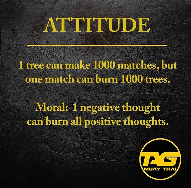 Martial Arts Motivation 25 Quotes For Fighters