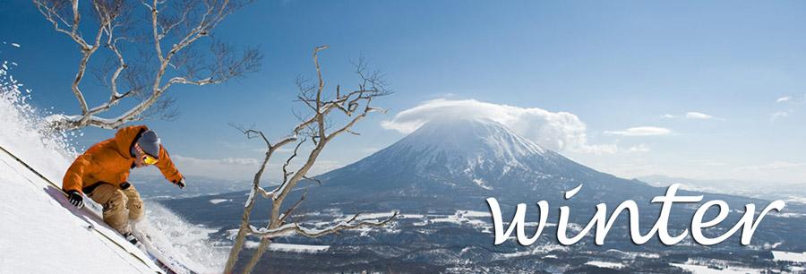Winter - 冬