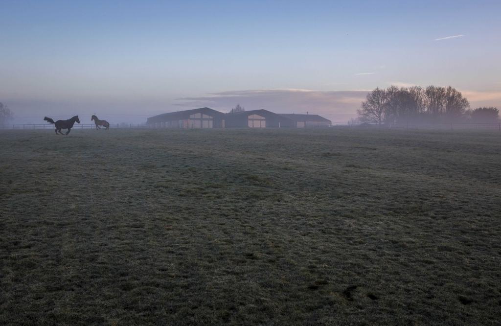 Aylesbury barn conversion - fields