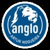 Anglo Artur Nogueira