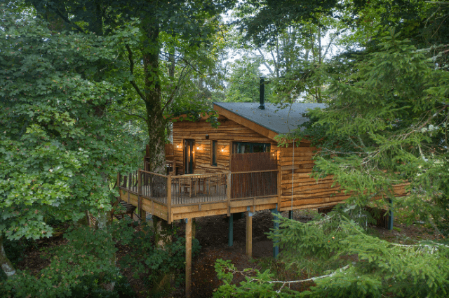 Glamping treehouses
