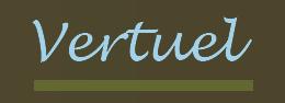 logo_vertuel