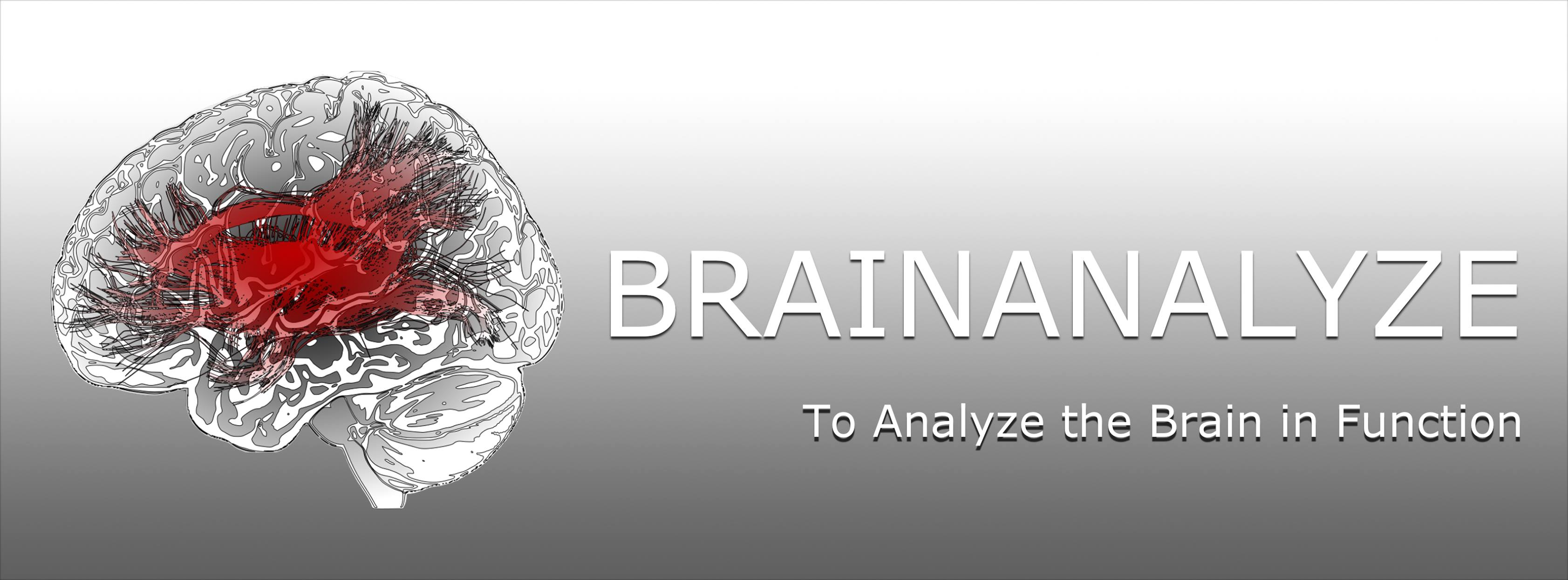 BrainAnalyze