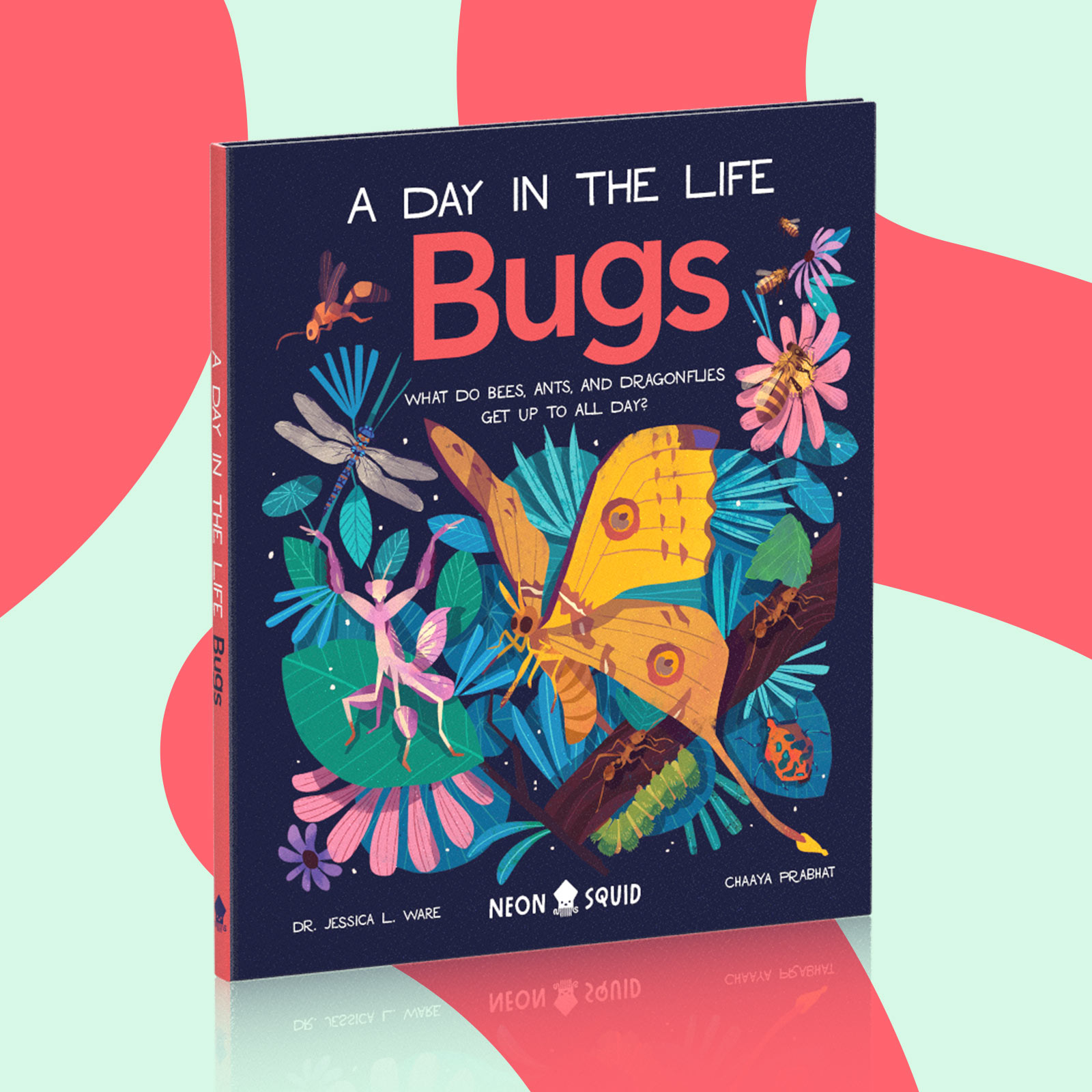 """The book """"A Day in the Life: Bugs"""", on a red and blue background."""