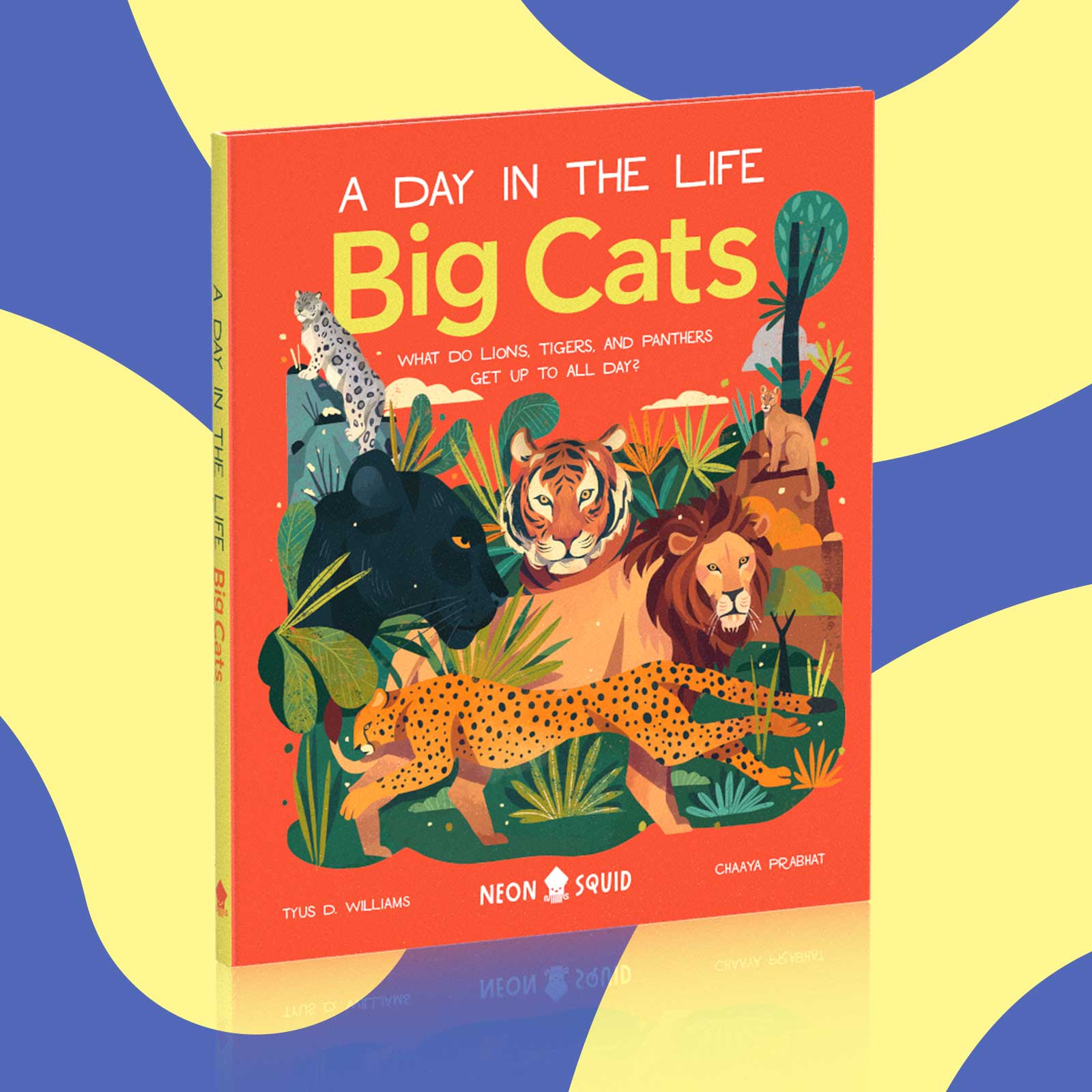 """The book """"A Day in the Life: Big Cats"""", on a red and blue background."""