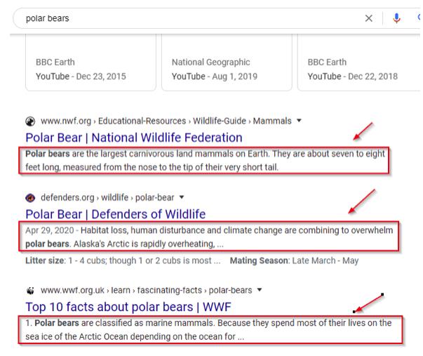 Meta description for the search term polar bears
