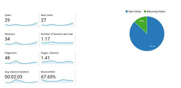 Screenshot of Google Analytics showcasing the percentage of returning visitors