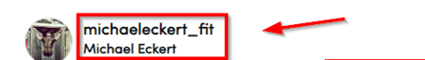 Screenshot of the TikTok channel name from Michael Eckert