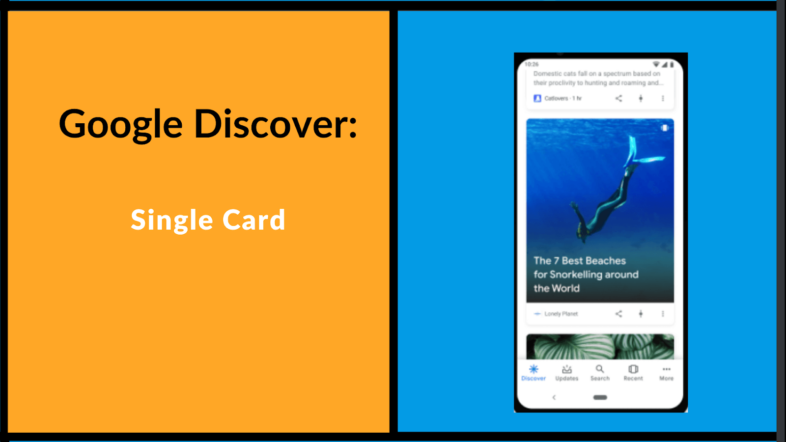 google discover showing as a single card