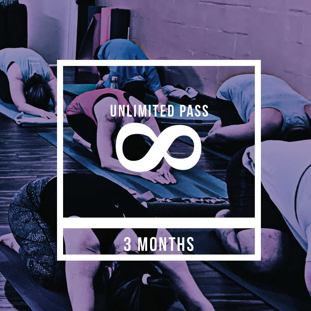 3 month unlimited pass for $300