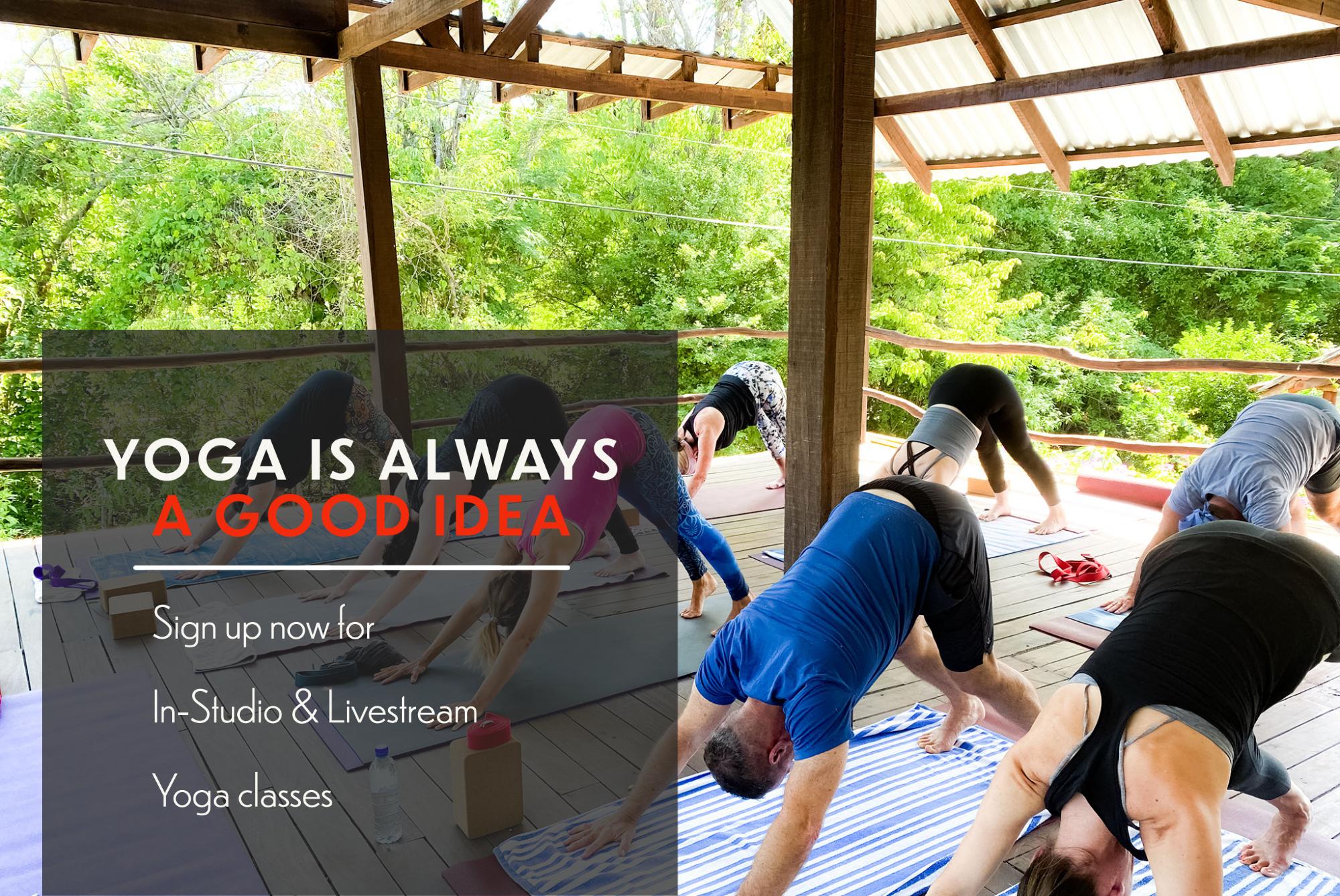 Yoga is always a good idea! Instudio and livestream classes!