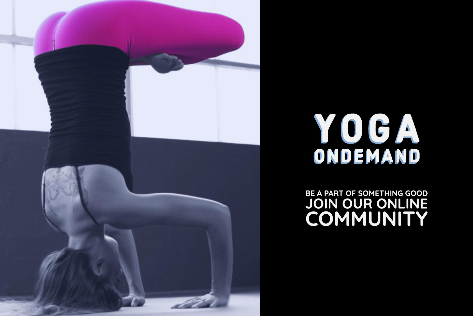 College Park Yoga IN-studio yoga classes are a pure joy!